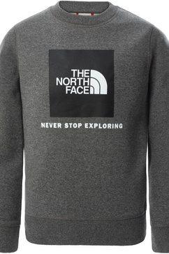 the north face sweatshirt grijs