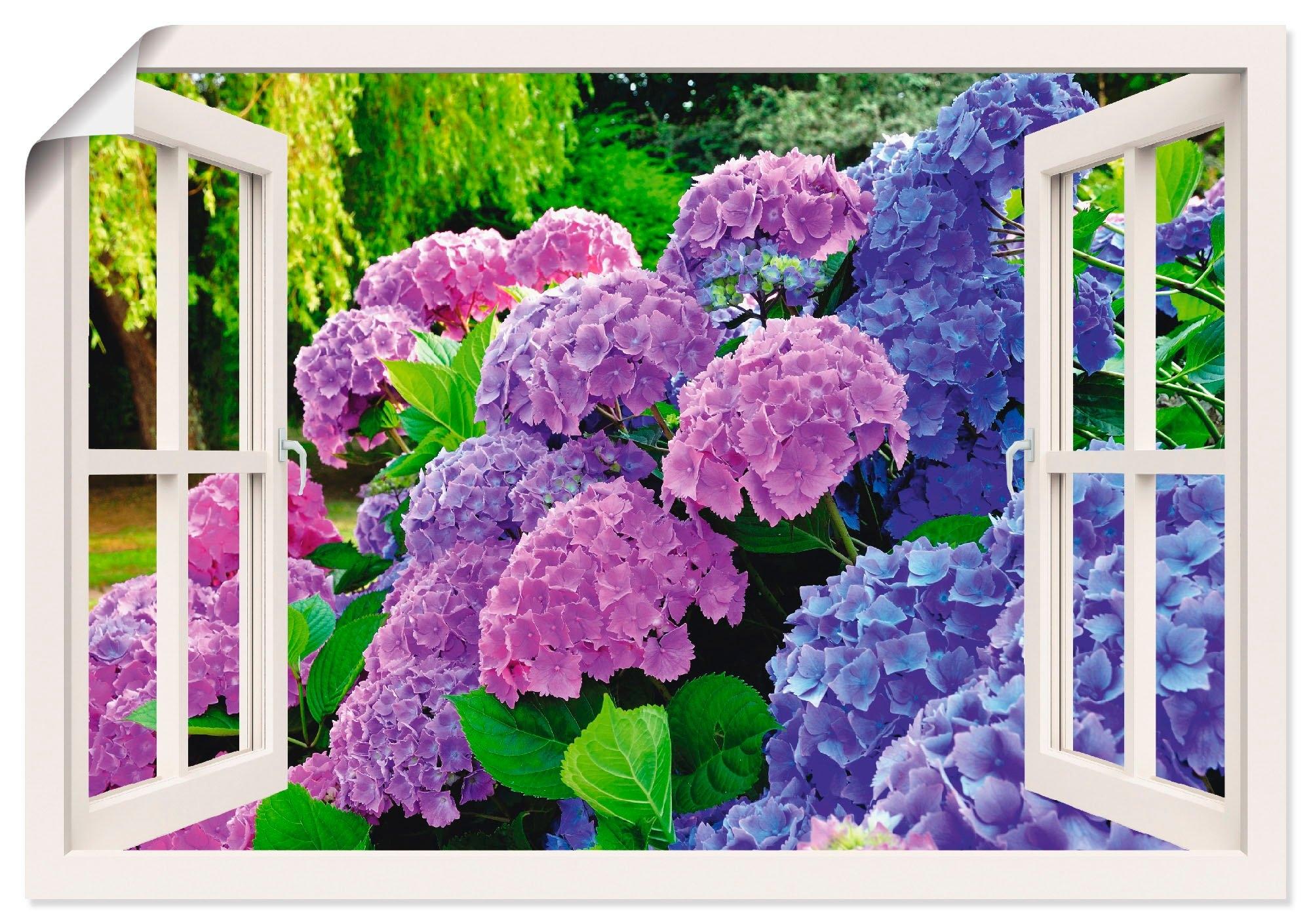 Op zoek naar een Artland artprint Blik uit het venster hortensia's in de tuin in vele afmetingen & productsoorten - artprint van aluminium / artprint voor buiten, artprint op linnen, poster, muursticker / wandfolie ook geschikt voor de badkamer (1 stuk)? Koop online bij OTTO