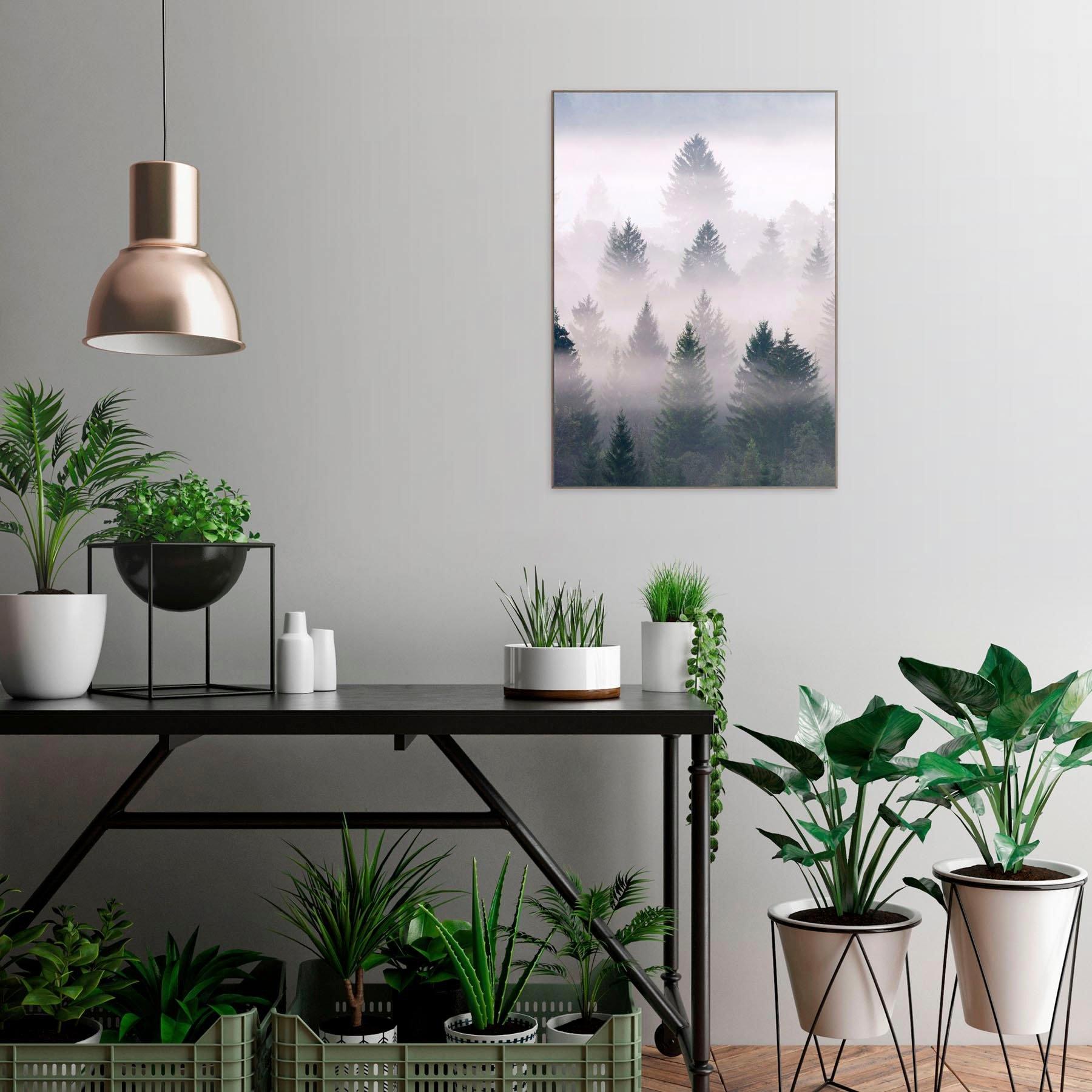 Op zoek naar een Reinders! artprint Slim Frame Wood 50x70 Misty Woods? Koop online bij OTTO