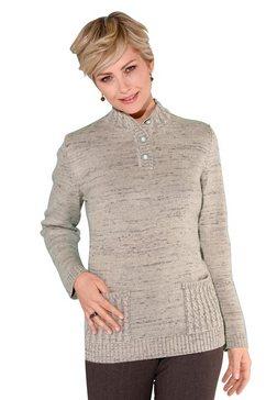 classic trui met staande kraag trui bruin