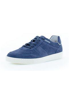 pius gabor sneakers blauw