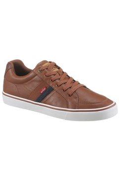 levi's sneakers bruin