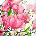artland artprint pinkkleurige magnolia's in vele afmetingen  productsoorten - artprint van aluminium - artprint voor buiten, artprint op linnen, poster, muursticker - wandfolie ook geschikt voor de badkamer (1 stuk) roze