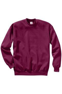 sweatshirt, fruit of the loom rood