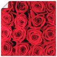 artland artprint rode rozencreatie in vele afmetingen  productsoorten -artprint op linnen, poster, muursticker - wandfolie ook geschikt voor de badkamer (1 stuk) rood