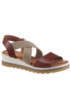 cosmos comfort sandalen met elastiek bruin