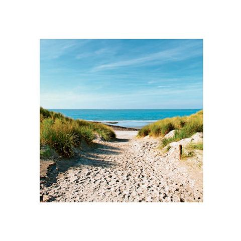 Glazen artprint, Artland, 'Beach with sand dunes and a path to the sea', in 3 afmetingen, vanaf afm. 30x30 cm