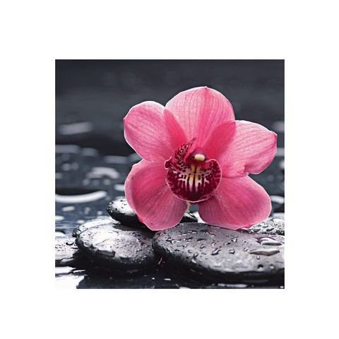 Glazen artprint, Artland, 'Still life with pepple and macro of orchid with water drops', in 2 afmeti