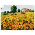 artland artprint veld met zonnebloemen in vele afmetingen  productsoorten -artprint op linnen, poster, muursticker - wandfolie ook geschikt voor de badkamer (1 stuk) geel