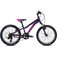 fuji bikes mountainbike fuji dynamite 20 2021 paars