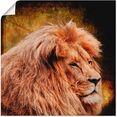 artland artprint leeuw in vele afmetingen  productsoorten -artprint op linnen, poster, muursticker - wandfolie ook geschikt voor de badkamer (1 stuk) goud
