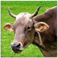 artland print op glas dier koe (1 stuk) bruin
