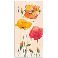 artland kapstok »bunte mohnblumen« beige