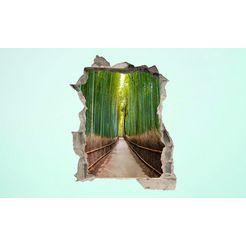 conni oberkircher´s wandfolie 3d sticker beton bamboo trees multicolor