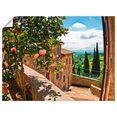 artland artprint rozen op balkon toscaans landschap in vele afmetingen  productsoorten - artprint van aluminium - artprint voor buiten, artprint op linnen, poster, muursticker - wandfolie ook geschikt voor de badkamer (1 stuk) groen