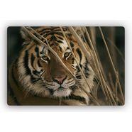 home affaire artprint op glas »tiger« 60x40 cm of 100x70 cm bruin