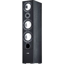 canton staande luidspreker gle 490.2 1 stuk (1) zwart