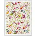 wall-art poster sprookje artprints prachtige vogels poster, artprint, wandposter (1 stuk) multicolor