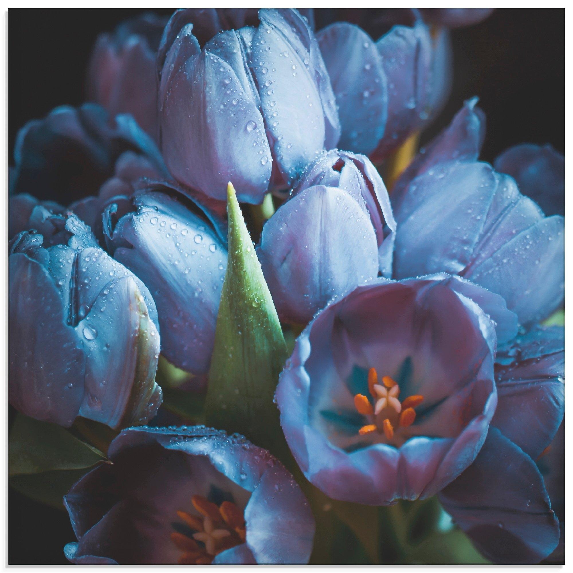 Artland print op glas Tulpen blauw (1 stuk) nu online kopen bij OTTO