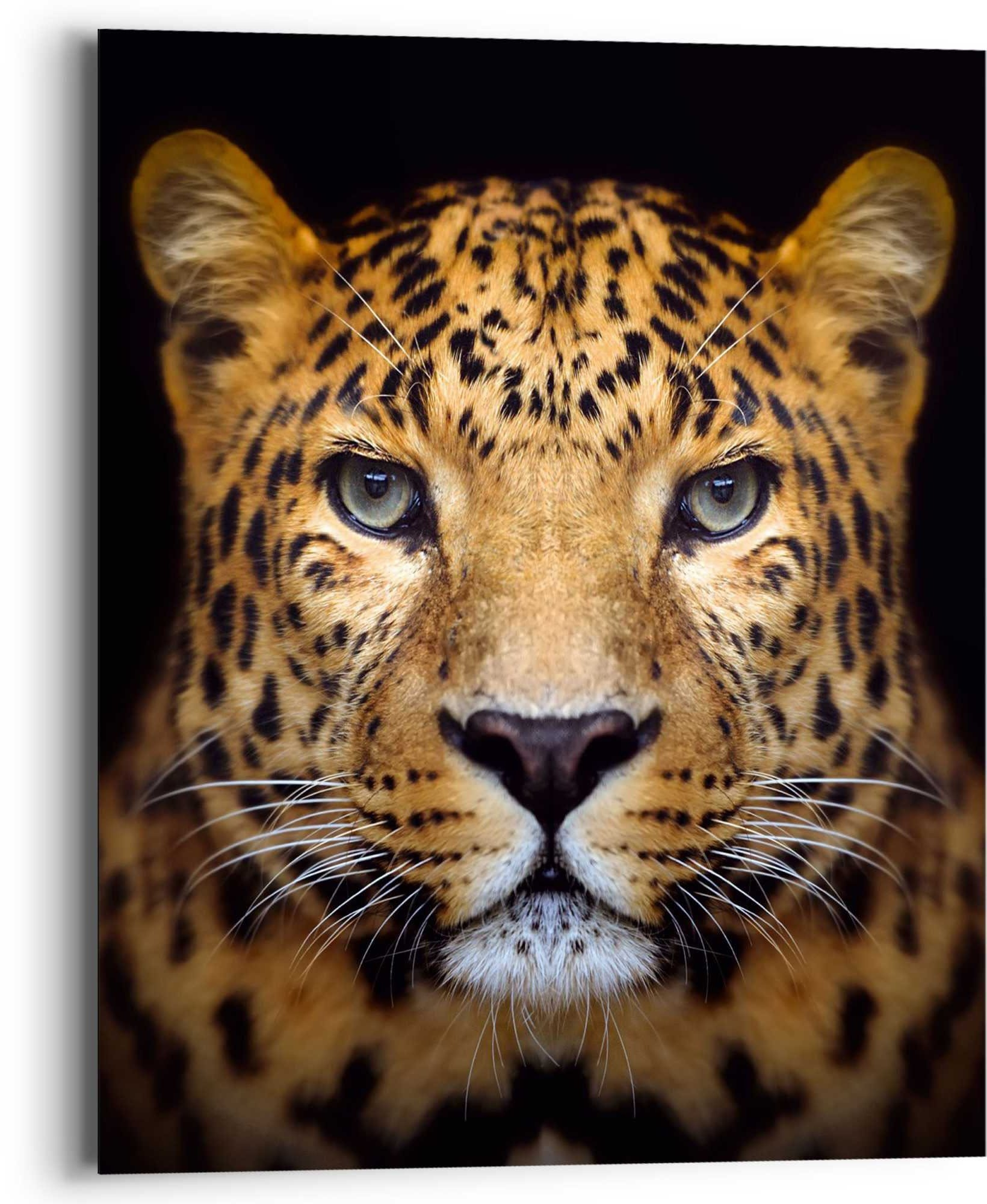 Reinders! artprint luipaard krachtig - panter - roofdier - gevlekt (1 stuk) - verschillende betaalmethodes