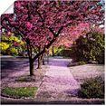 artland artprint vallende bloemblaadjes in vele afmetingen  productsoorten - artprint van aluminium - artprint voor buiten, artprint op linnen, poster, muursticker - wandfolie ook geschikt voor de badkamer (1 stuk) roze