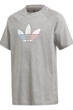 adidas originals t-shirt »adicolor graphic« grijs