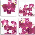 artland artprint op linnen vlinderorchidee (4 stuks) roze