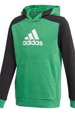 adidas performance hoodie »logo« groen