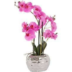 kunstorchidee »orchidee« paars