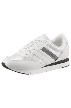 calvin klein sneakers »tea« wit