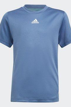 adidas performance trainingsshirt »aeroready« blauw