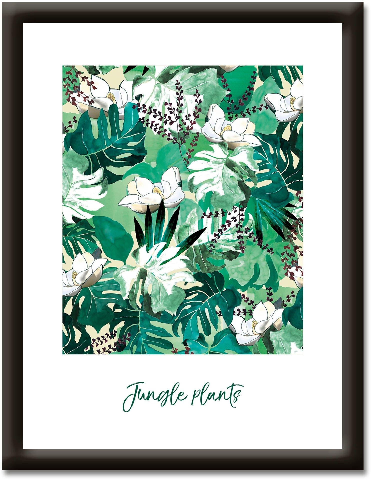 Artland artprint Jungleplanten (1 stuk) bij OTTO online kopen