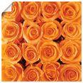 artland artprint oranje rooscreatie in vele afmetingen  productsoorten -artprint op linnen, poster, muursticker - wandfolie ook geschikt voor de badkamer (1 stuk) oranje