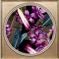 queence artprint op acrylglas bloemen paars