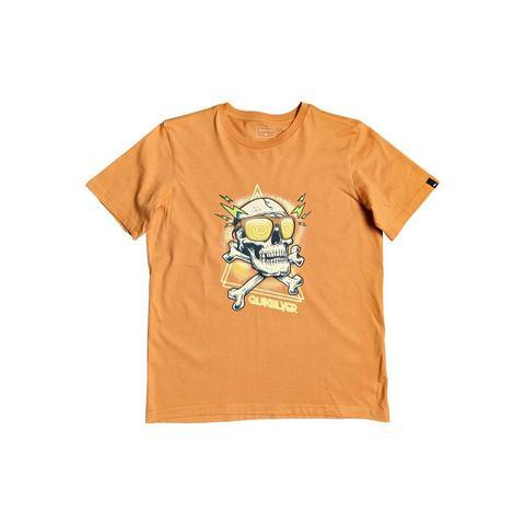 NU 20% KORTING: Quiksilver T-shirt Hell Revival