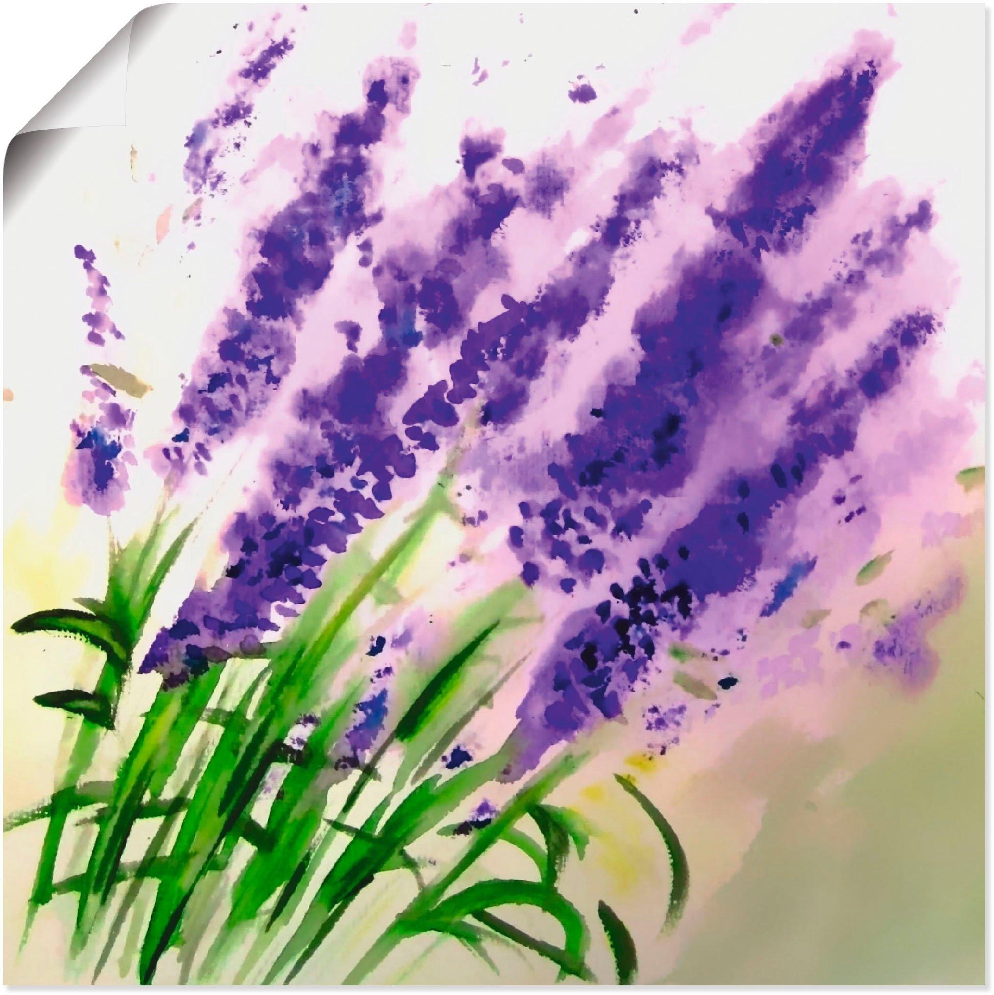 Op zoek naar een Artland artprint Lavendel-aquarel in vele afmetingen & productsoorten -artprint op linnen, poster, muursticker / wandfolie ook geschikt voor de badkamer (1 stuk)? Koop online bij OTTO