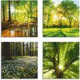 artland artprint op linnen bos beek voorjaar windroos zon boom (4 stuks) groen
