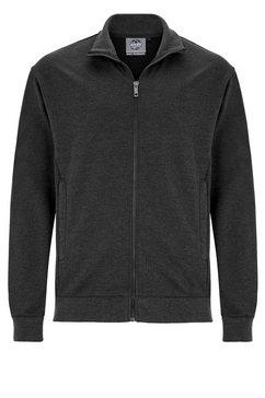 ahorn sportswear hoodie grijs