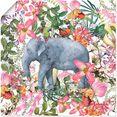 artland artprint olifant in bloemen jungle in vele afmetingen  productsoorten - artprint van aluminium - artprint voor buiten, artprint op linnen, poster, muursticker - wandfolie ook geschikt voor de badkamer (1 stuk) roze