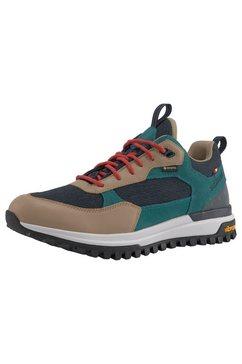 dachstein sneakers »phil lc gore-tex« blauw