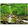 artland print op glas herfstbos rivier smolny (1 stuk) groen
