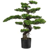 creativ green kunstbonsai bonsai (1 stuk) groen