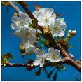 artland print op glas kersenbloesemtwijg (1 stuk) beige