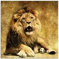 artland print op glas de koning - leeuw (1 stuk) bruin