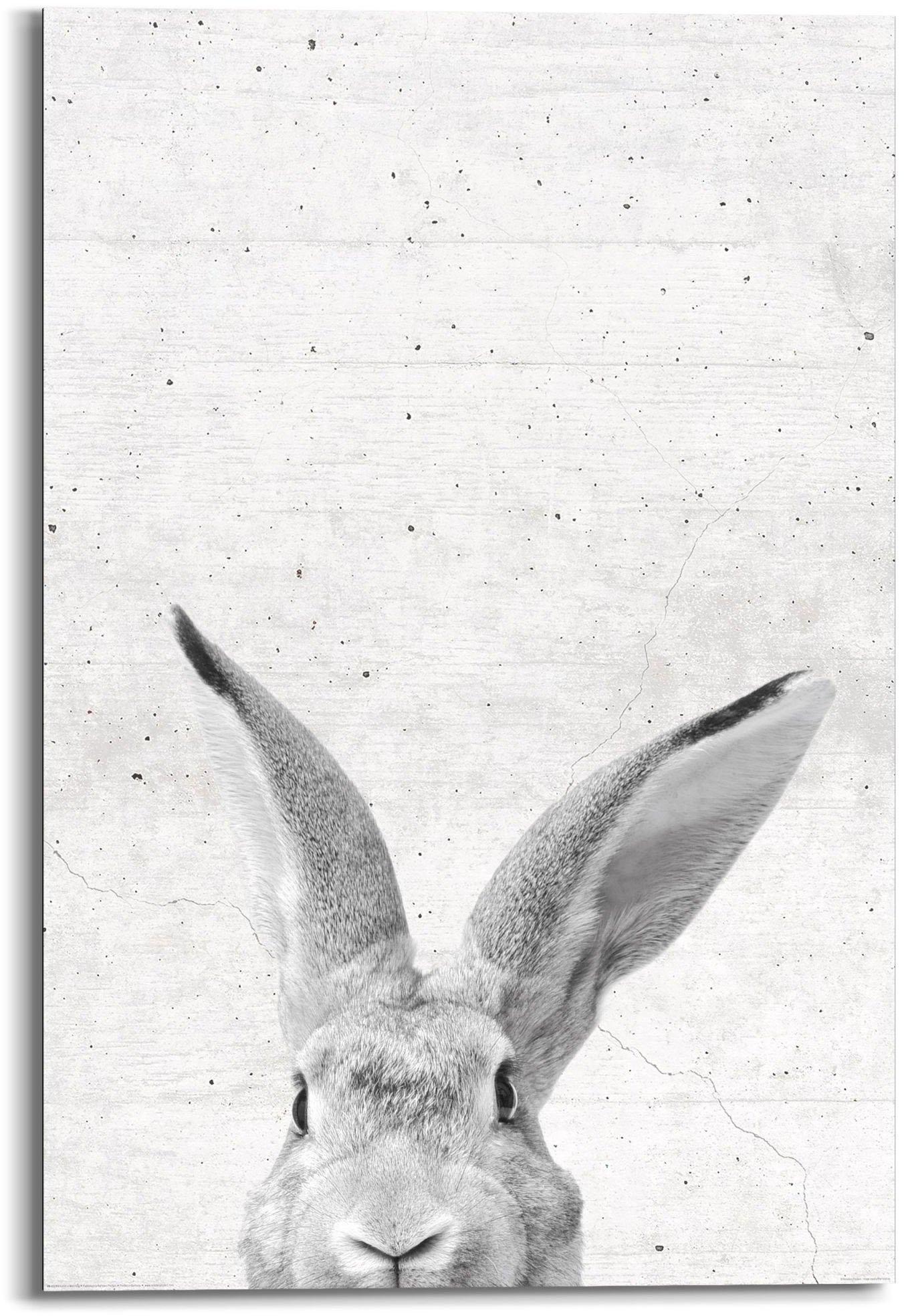 Reinders! artprint Wandbild Kaninchen beobachtet dich Tiermotiv - Hase - Niedlich (1 stuk) nu online bestellen
