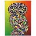 artland print op glas »eule« multicolor