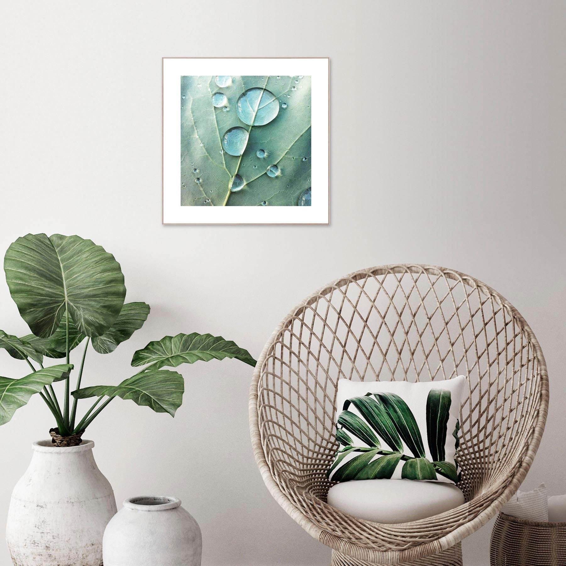Reinders! artprint Slim Frame Wood 50x50 Dew Drops - verschillende betaalmethodes