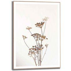reinders! wanddecoratie ingelijste print berenklauw natuur - plant - gedroogd - bloemen (1 stuk) geel