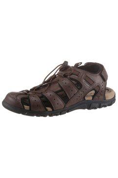 geox sandalen met klittenbandsluiting bij de hiel bruin