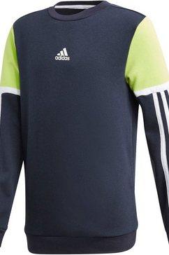 adidas performance sweatshirt »bold crew« blauw